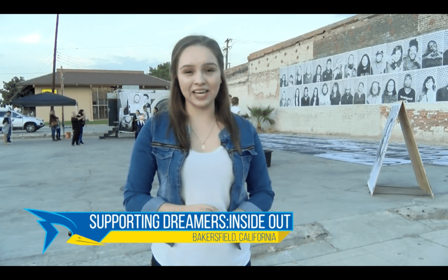 Supporting Dreamers: Insideout