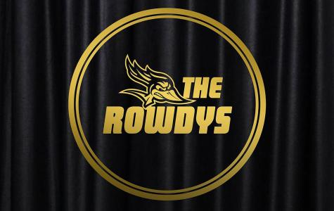The 2020 ROWDY awards