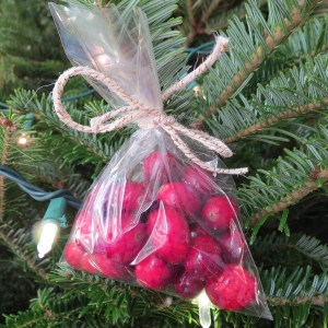 cranberry ornament