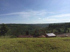 Our view every morning in Kayonza.