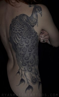healed black and grey peacock, 2011. another time where i probably would have chosen to do color if it were my choice, but ended up liking it more because it wasn't.