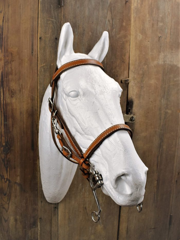 Combination Halter Bridle