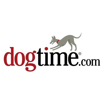 dogtime