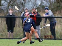 Camogie 20