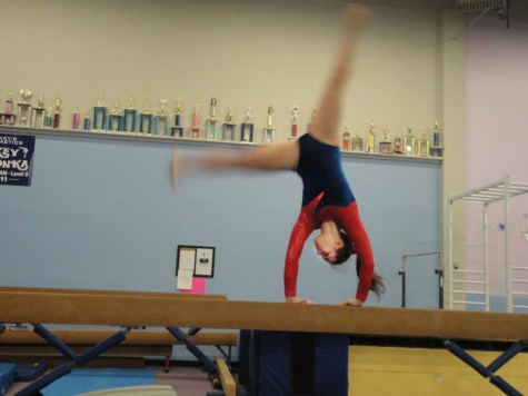 Gymnasts face lack of coach and facilities