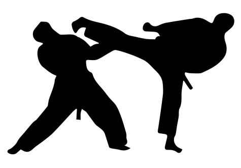 Taekwondo nurtures mental and physical strength