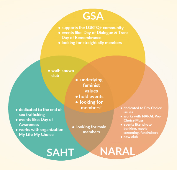 GSA, NARAL and SAHT are three clubs at the high school that work to achieve equality.