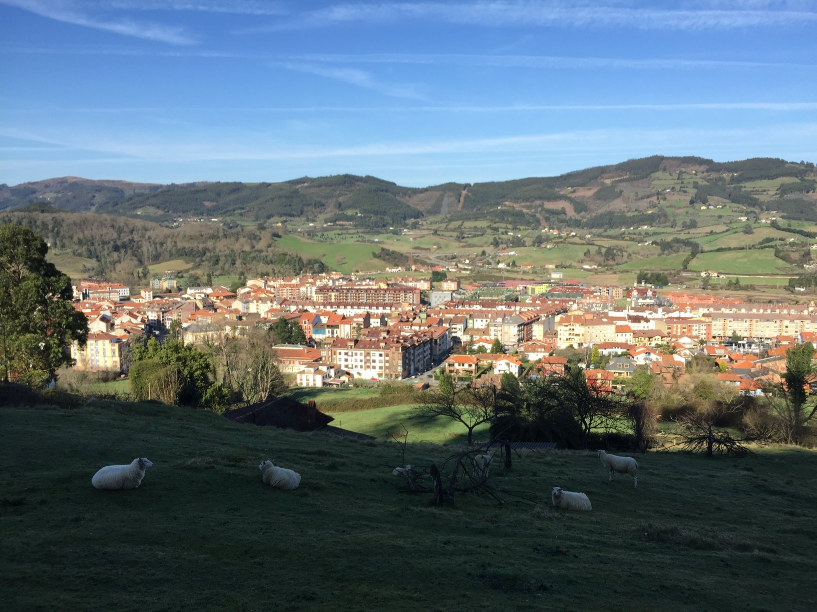 Students gazed upon fishing villages in Asturias from on top of a mountain.