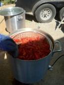 Crawfish boil, Louisiana style..