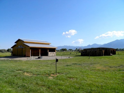 Horse/Donkey Barn with equipment shed on right.