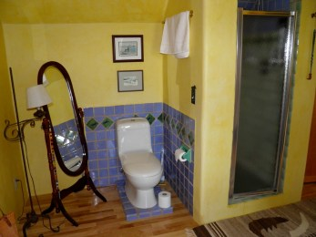 Tiled surround and shower in second floor bathroom.