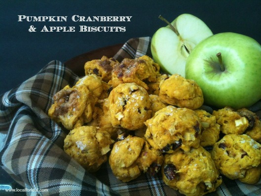 Pumpkin Cranberry & Apple Biscuits
