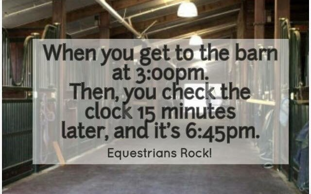 15 Signs that you are a true equestrian girl