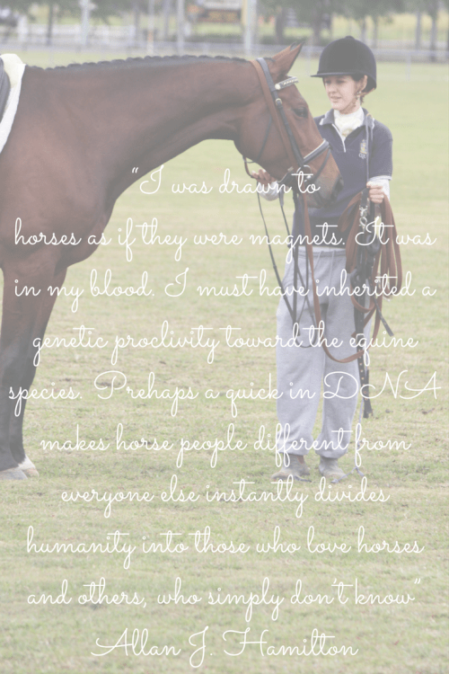 I was drawn to horses as if they were magnets