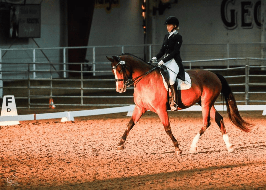 The blonde & The Bay in the competition arena