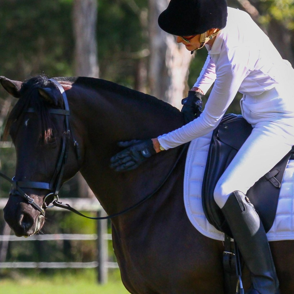 Day 3 of The Horse Riders Challenge - riders who inspire you