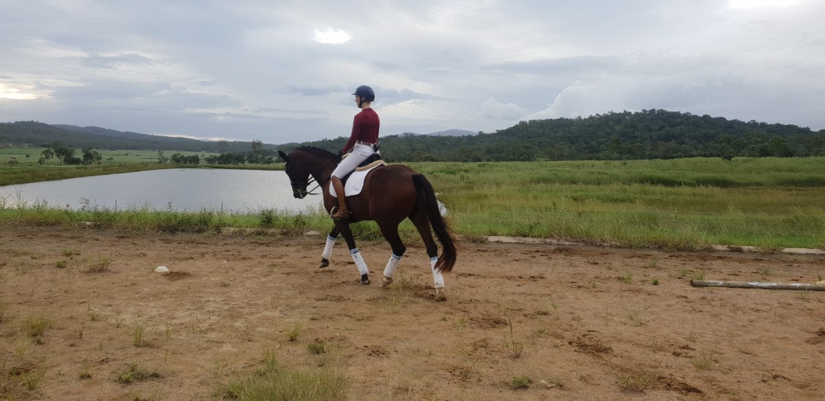 Warming up for our dressage tests for Equimind