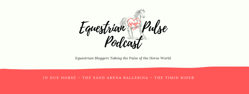 Together with two of my favourite equestrians, I started a podcast