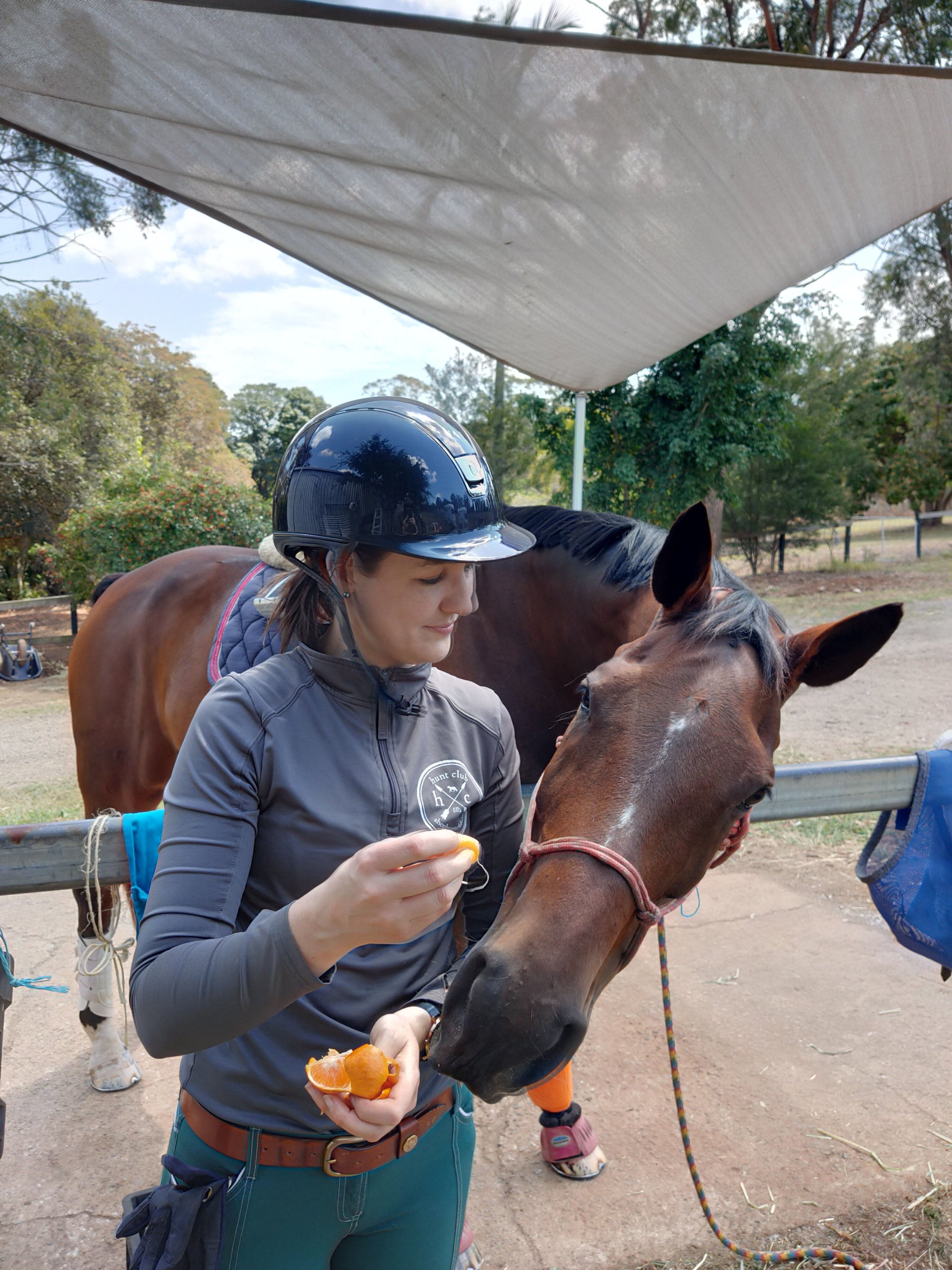 Madarines are one of Nonie's top 10 favourite horse treats