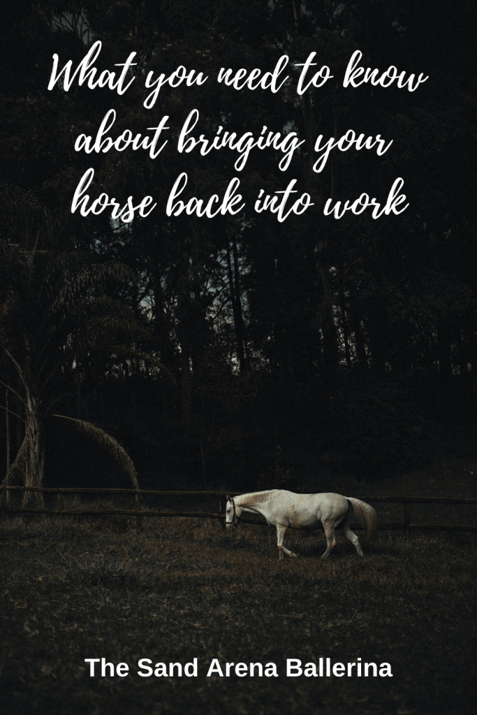 Bringing your horse back into work is not a simple process so I've put together some key things to think about when you are reconditioning your horse after a spell.