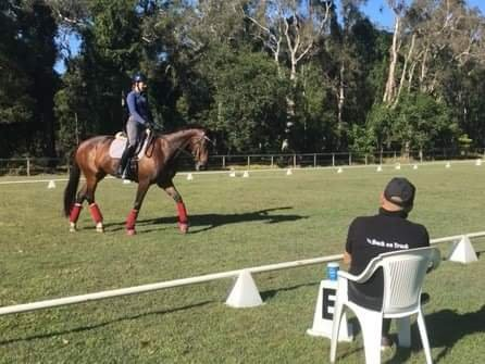 Why it's not a disgrace to have your coach ride your horse: According to the Sand Arena Ballerina