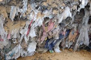 Bag Ban. Plastic bags clog the Marina landfill. PHOTO BY JEFF LINDENTHALL