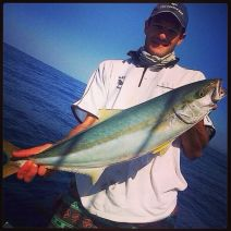 Yellowtail...by Mike Stubbs