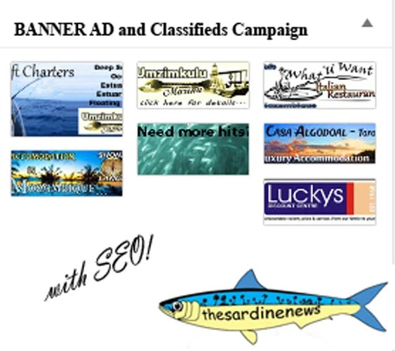 Banner Ad Campaign