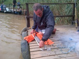 Captain Rob Nettleton measures up Gavin Naude's Umzimvubu Zambezi Shark, before it got a tag and went free again