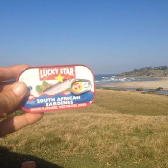 Lucky Star South African Sardines spotted off Umzumbe