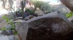 Groovy gardens