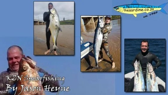 Wahoo included in this weeks KZN spearing news by Jason Heyne