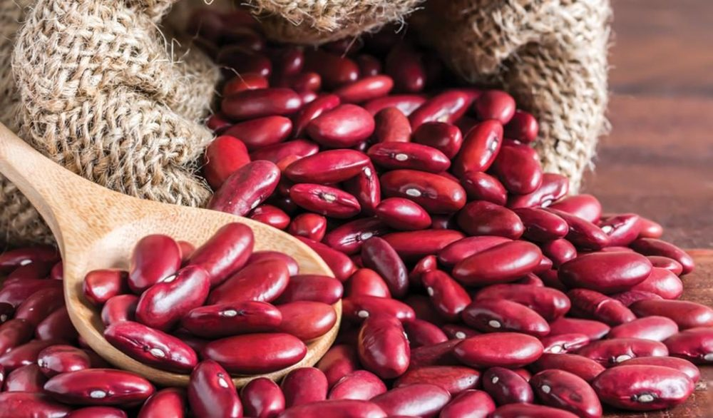 Fiber Rich Food for Weight Loss