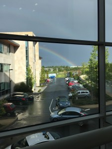 rainbow at fidelity