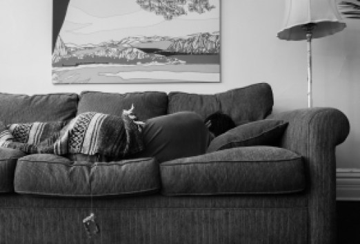 tom-moran-sofa