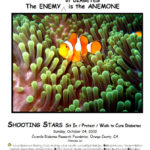 Shooting Stars Fundraiser 2010
