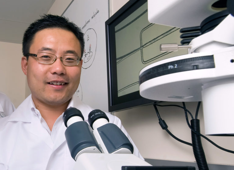 Savvy Spotlight: Dr. Weian Zhao, Outstanding & Exciting UC Irvine Researcher!