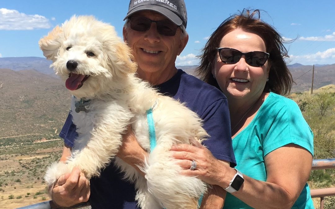 Savvy Pets, 2/7/20:  Awwww, Kona, the mini Goldendoodle … and How to Talk to Your Dog