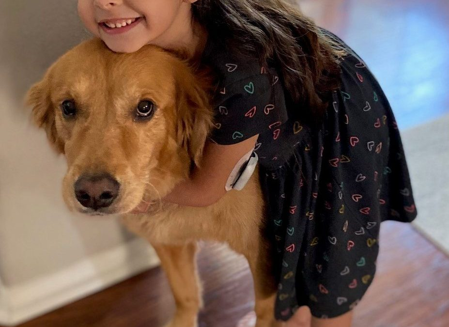 Savvy Pets, 12/4/20:  Meet Sherlock, the SUPER AMAZING Triple Diabetes Alert Dog!
