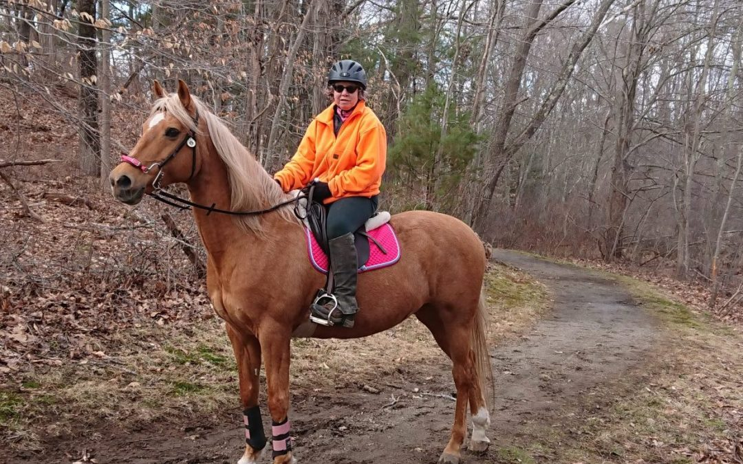 Savvy Pets, 1/8/21:  Whoa, meet Feronia, the diabetes alert mare!!!
