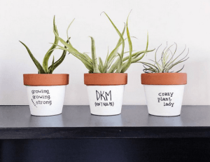 """Punny"" planters on Etsy"