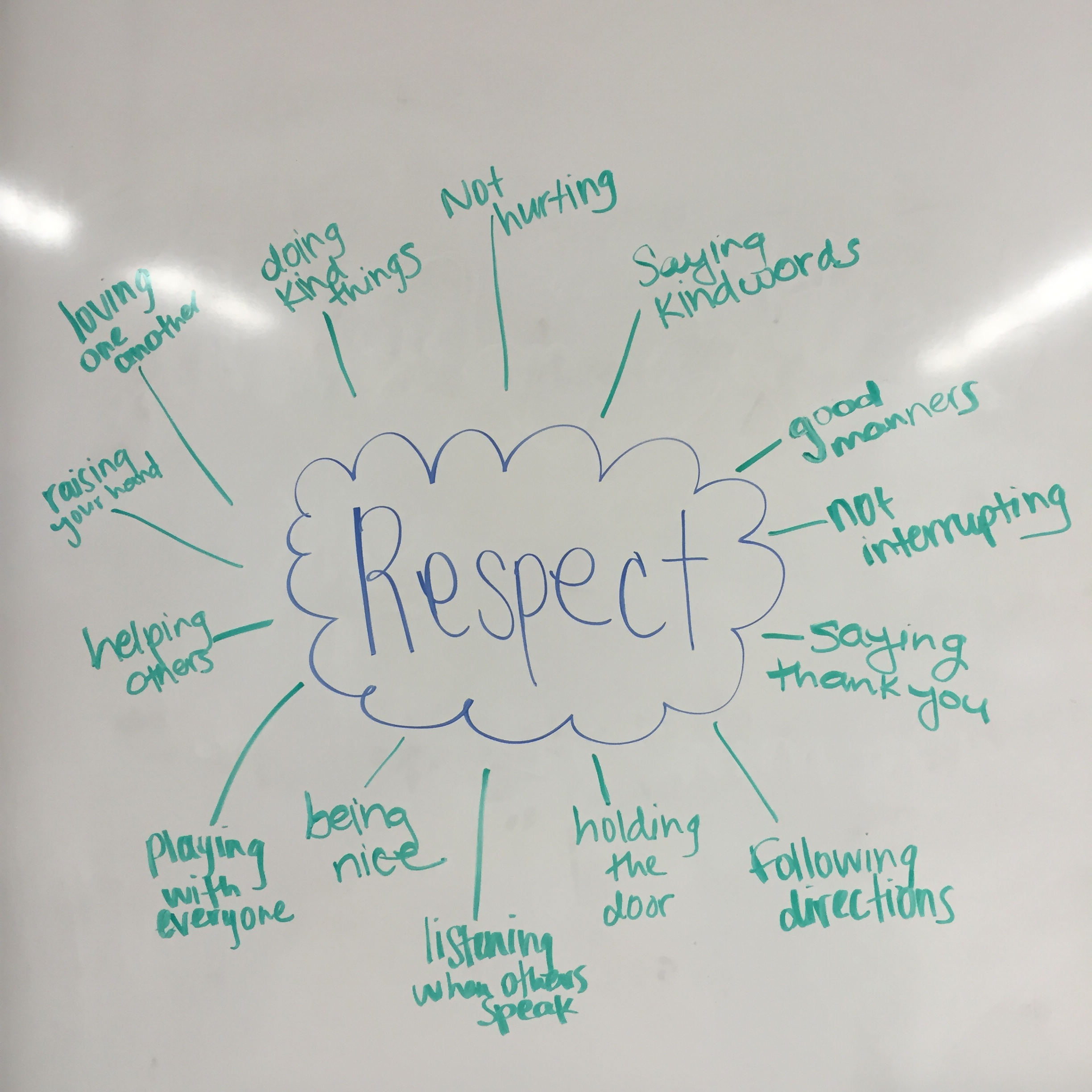 1st Grade Lesson On Respect What If Everybody Did That