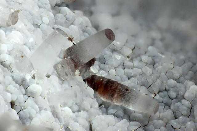 5 of the Most Lethal Minerals on the Planet
