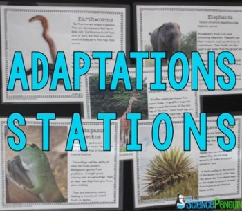 Adaptations Lesson