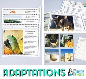 Adaptations Science Stations Unit