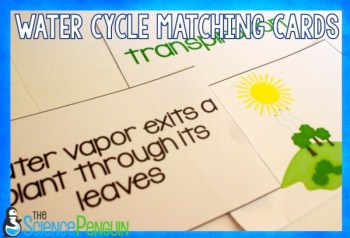 Water Cycle Vocabulary