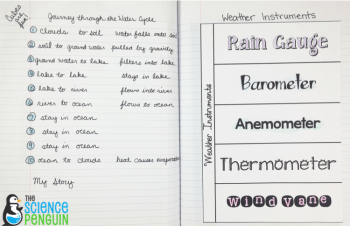 Water Cycle Dice Game and Weather Instruments fold-up-- pics from my notebook