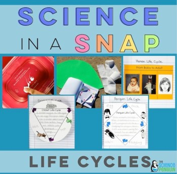 Life Cycles in a Snap Unit