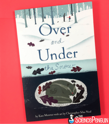 Over and Under the Snow picture book science lesson on animal adaptations in winter