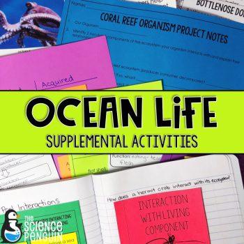 Ocean Life on TpT